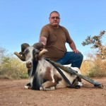 painted desert ram hunt