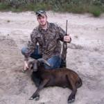Black ram hunt