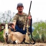 corsican ram hunting