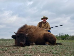 American buffalo bison hunt